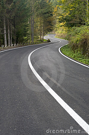 Free Windy Road In The Forest Royalty Free Stock Images - 12756009