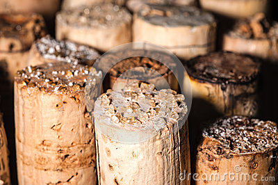 Wine Crystals on old Corks
