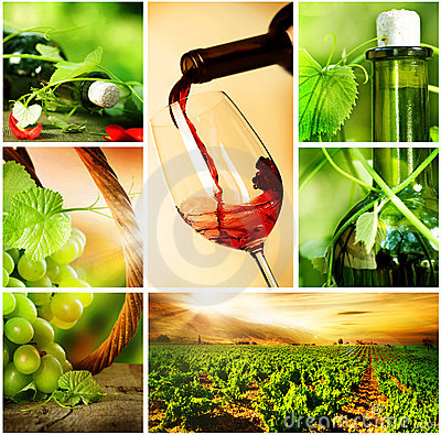 Wine.Beautiful Grapes Collage