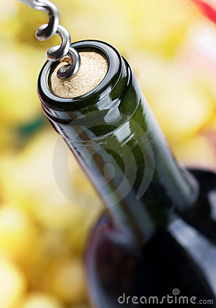 Free Wine Bottle Royalty Free Stock Photo - 16566835