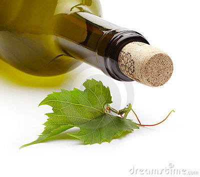 Wine bottle and grape vine