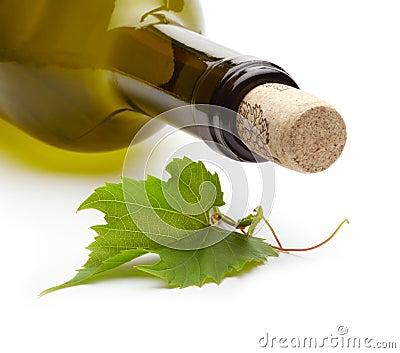 Wine bottle and grape vine