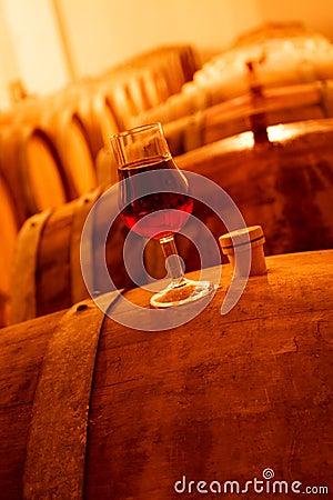 Free Wine Cellar Stock Photo - 7045280