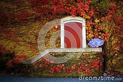 Wine Cellar Vine Covered Door