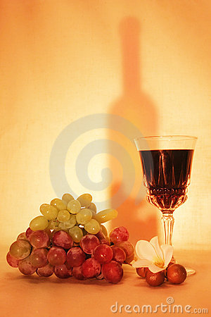 Wine, fruits and silhouette