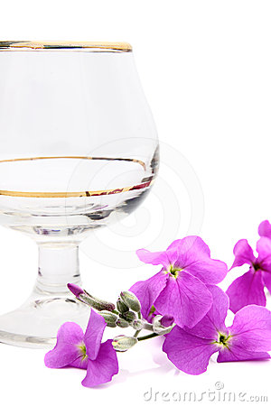 A wine glass and a single pink flower.