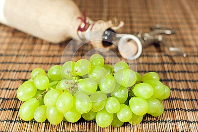 Wine - from grapes to bottle
