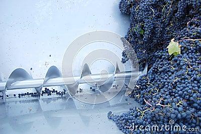 Wine-making machine