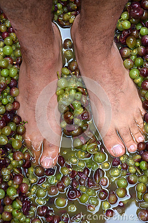 Wine making process