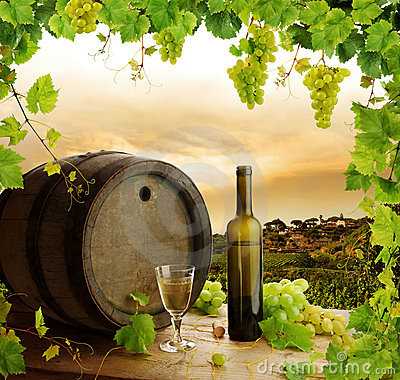 Free Wine Still Life And Vineyard Royalty Free Stock Image - 12806406