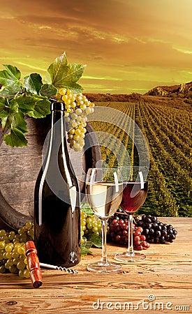 Wine in vineyard