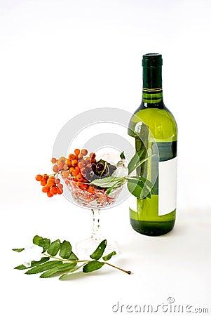 Wine and wild ash