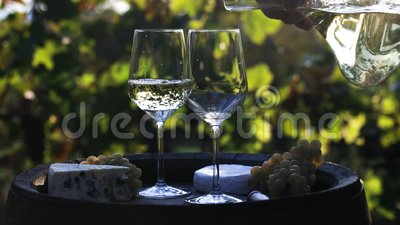 Winemaker που χύνει το άσπρο κρασί στα γυαλιά απόθεμα βίντεο