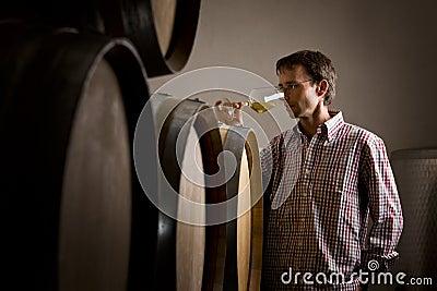 Winemaker in kelder die witte wijn in glas ruikt.
