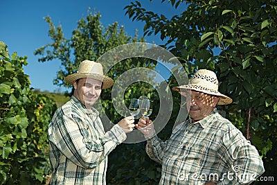Winemakers celebrating vintage