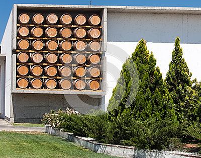 Winery in Chile