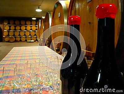 Wineyard cellar