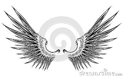 Wing 8
