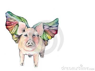 Winged Pig Illustration