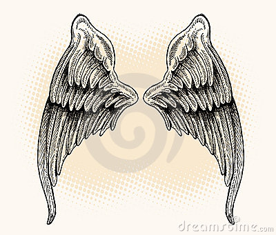 Wings - Hand Drawn