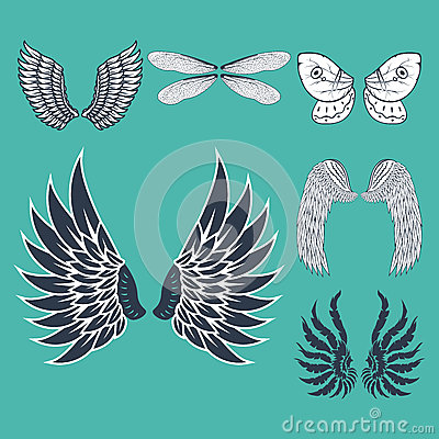 Free Wings Isolated Animal Feather Pinion Bird Freedom Flight Natural Peace Design Vector Illustration. Royalty Free Stock Photos - 92766828