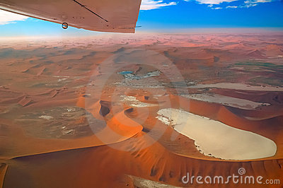 Wings over the Namib