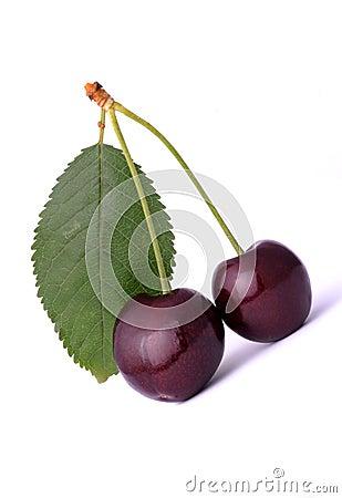 Wiśnie