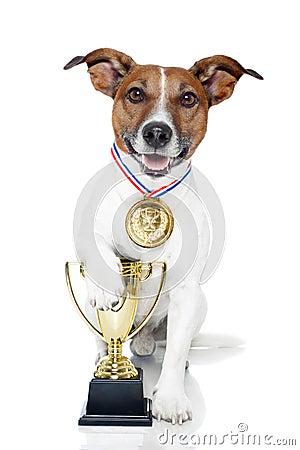 Free Winner Dog Royalty Free Stock Photo - 24595925