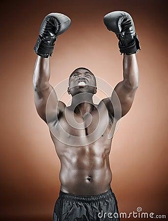 Winning boxer