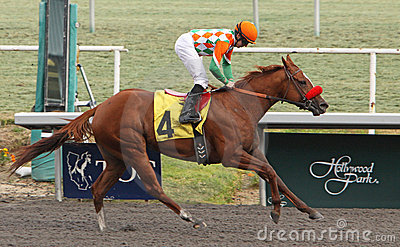 Winning Her First Race Editorial Stock Image