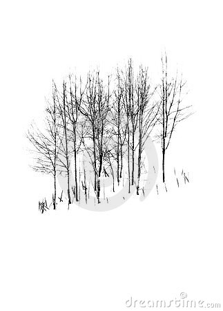Free Winter Royalty Free Stock Images - 257329