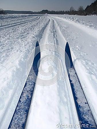 Free Winter Stock Image - 257331