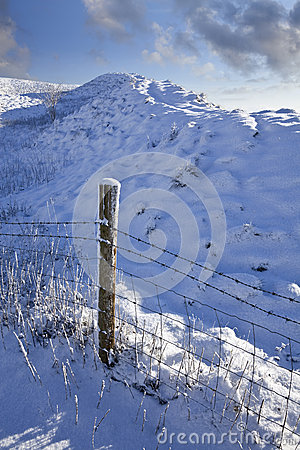 Free Winter Royalty Free Stock Photo - 40571465