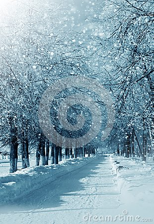 Free Winter Alley Royalty Free Stock Images - 102405169