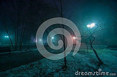 Spookie park in winter