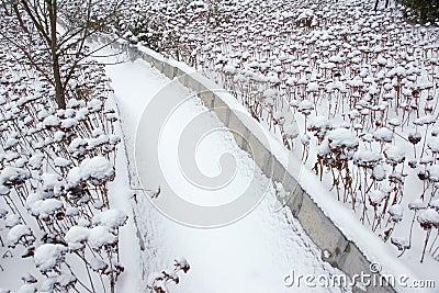 Winter aqueduct