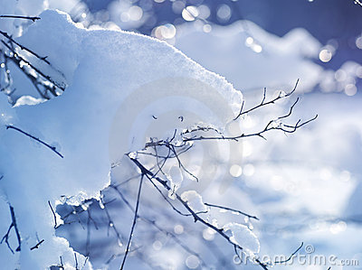 Winter art design. Snow