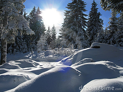 Winter in austria