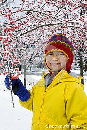 Winter Berries 3