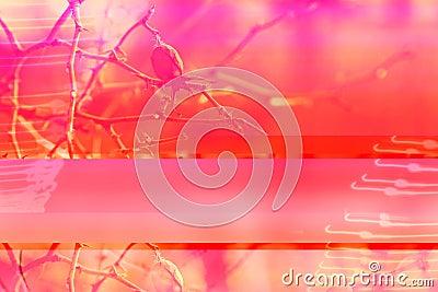 Winter berries digital collage in pink