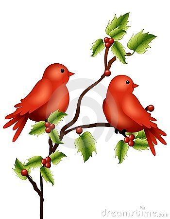 Free Winter Birds Holly Branch Stock Image - 7049711