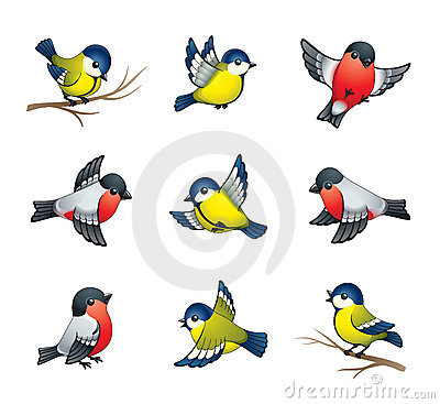 Winter Birds Illustration