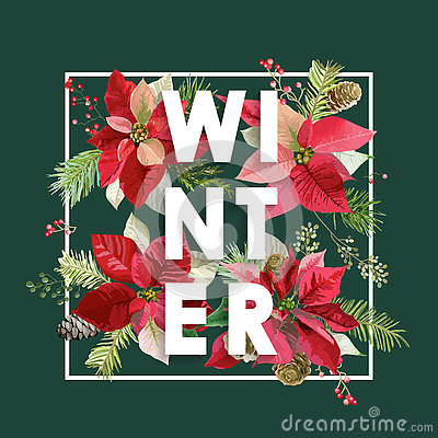 Free Winter Christmas Design In Vector. Winter Flowers With Pines Stock Images - 80500134