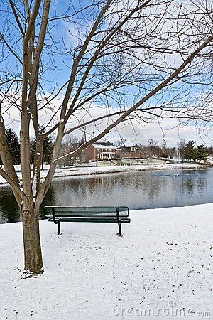 Winter city scene with a bench near pond