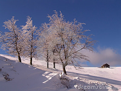 Winter in Ciucas Mountains