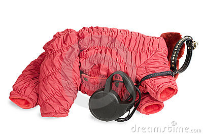 Winter clothing and leash for  dog.