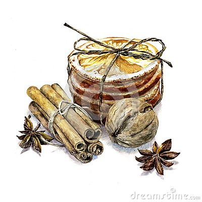 Winter composition of cinnamon, walnut and dried oranges Cartoon Illustration