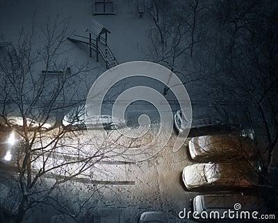 Winter court yard