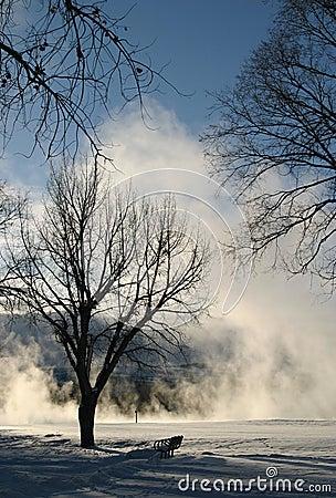 Winter Dream Series 6