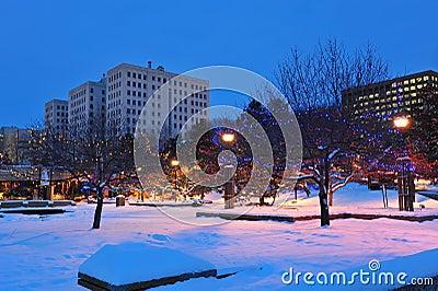 Winter edmonton